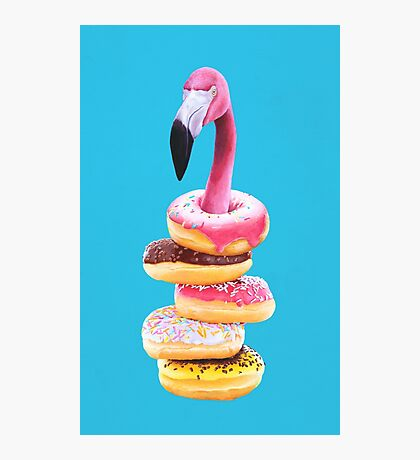 A Famished Flamingo Photographic Print