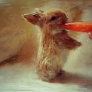 Wee Bitty Bunny by RobynLee