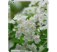 Tiny White Blossoms iPad Case/Skin