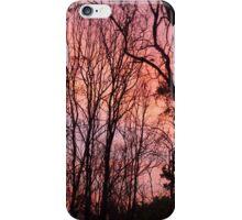 Sunset Silhouette iPhone Case/Skin