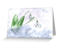 Snowdrop Flowers Painting 4 Greeting Card