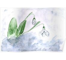 Snowdrop Flowers Painting 4 Poster