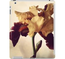 Two-Tone Iris iPad Case/Skin