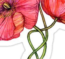 Peach & Pink Poppy Tangle Sticker