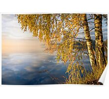 From blue to yellow II (nice morning light on the lake) Poster