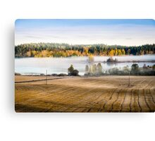Foggy morning on the lake Canvas Print