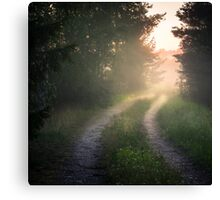 Lonely road (bright summer night) Canvas Print