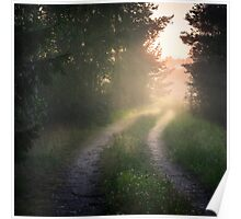 Lonely road (bright summer night) Poster
