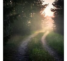 Lonely road (bright summer night) Photographic Print