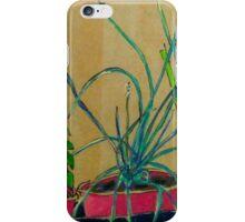 plants in pots  iPhone Case/Skin