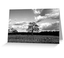 Curve Of The Earth Greeting Card