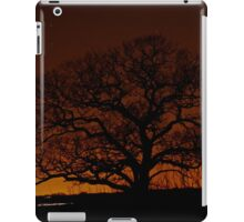 Lone But Strong iPad Case/Skin