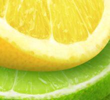 Lemon, lime and mint leaf Sticker