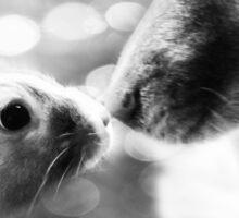 Interspecies Friendship #2 Sticker