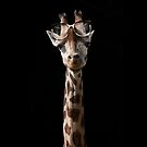 The Short-Sighted Giraffe by Andrew Bret Wallis