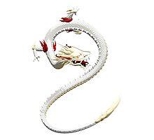 White Dragon Photographic Print