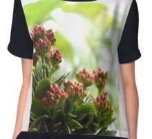 BUDS Women's Chiffon Top