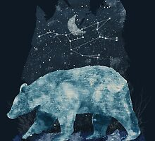 The Great Bear by Tracie Andrews