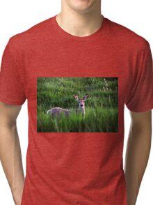 Hide In Plain Sight II Tri-blend T-Shirt