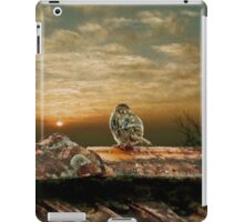 At the end of a wonderful day iPad Case/Skin