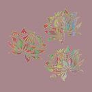 Lotus W by Vitta