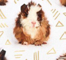 The Essential Guinea Pig Sticker