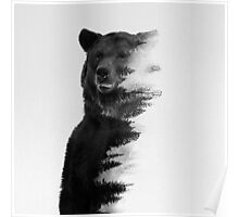 bear graphic nature photography Poster