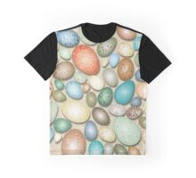 Colorful Bird Eggs Graphic T-Shirt
