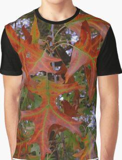 Colours of Autumn Graphic T-Shirt