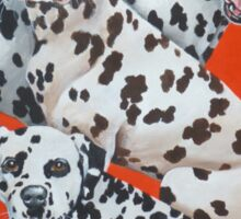 Dalmatians-Temporarily disabled. Please check back again Sticker