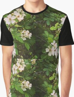 Dogwood Blooms  Graphic T-Shirt