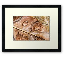Remains of the Rain Framed Print