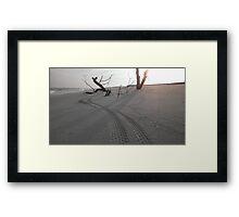 Fatbike Tracks Framed Print