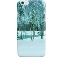 Winter has Arrived iPhone Case/Skin