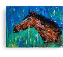 """""""Cavallo"""" Canvas Print"""