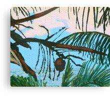 Caribbean coconut Canvas Print