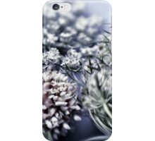 still life with thistle iPhone Case/Skin