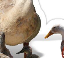 Back to School, my little ducklings! Sticker