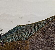 Birds over old roof abstract. by Robert Gipson