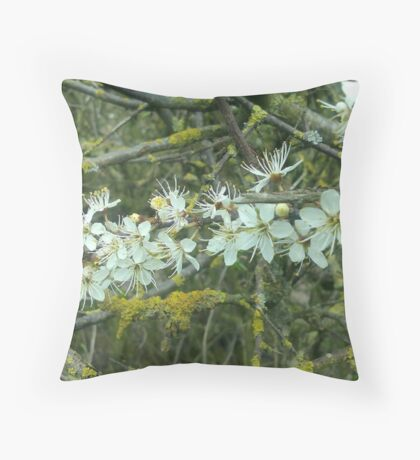 Decayed Blossom Throw Pillow