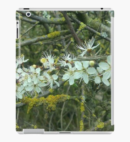 Decayed Blossom iPad Case/Skin
