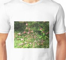 Scottish Broom plant Unisex T-Shirt