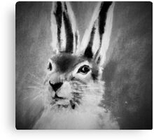 March Hare II Black and White Canvas Print