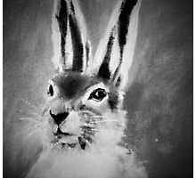 March Hare II Black and White Photographic Print