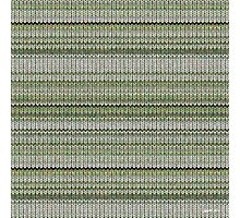 Cactus Garden Knit 3 Photographic Print
