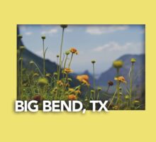 Big Bend Landscape 4 Kids Tee