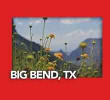 Big Bend Landscape 4 Kids Tee