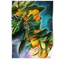 Small fruit tree in outer space Poster