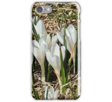 flowers in dolomites iPhone Case/Skin