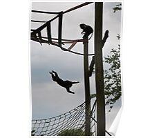 Flying monkey Poster